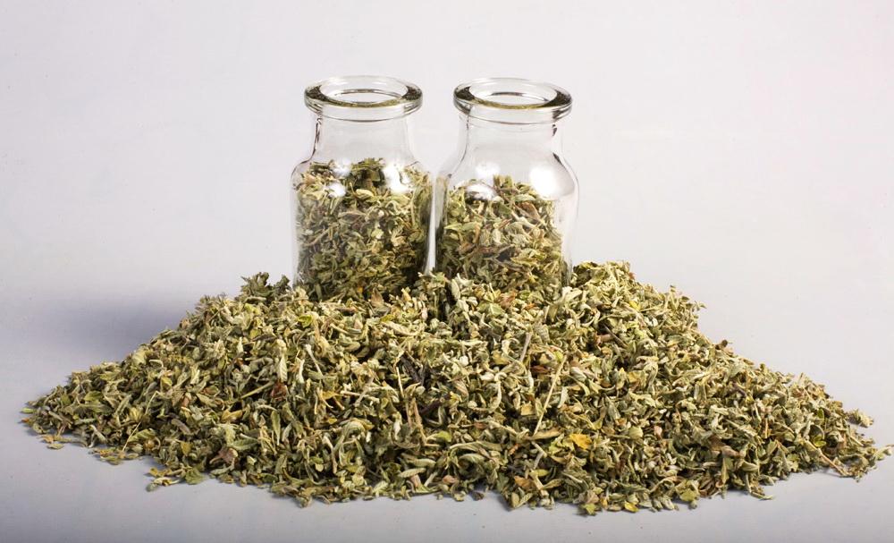Herbata damiana ma opinię świetnego zioła na potencję dla mężczyzn