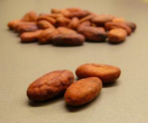 Ziarna kakao leczą zaburzenia erekcji