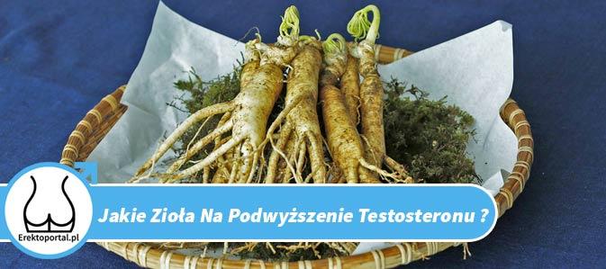 Chcesz wiedzieć jakie zioła na podwyższenie testosteronu są najlepsze? Przeczytaj ten wpis