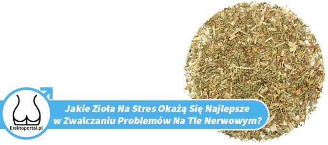 Jakie zioła na stres są najlepsze?