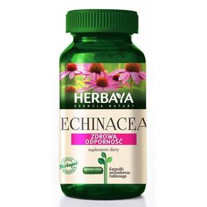Echinacea to zioła na grzybicę ogólnoustrojową dzięki którym szybo wrócisz do zdrowia